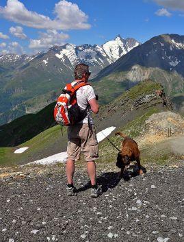 Kutyával utazóknak